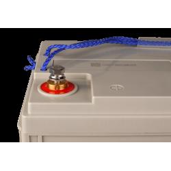 Batterie AGM Victron Energy - 12V/100Ah AGM Super Cycle (M6)